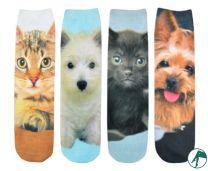 sokken met honden